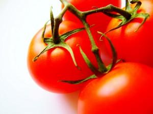 秋穂トマト
